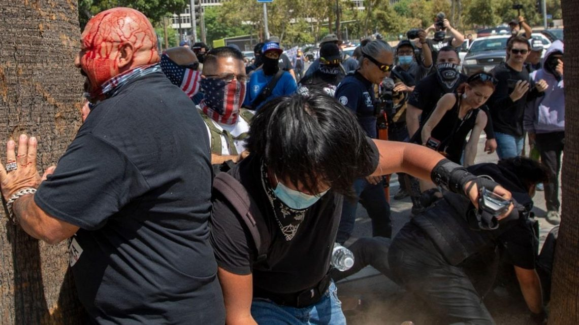 Los Angeles Anti-Vaxx Rally Erupts in Brawl, Man Stabbed