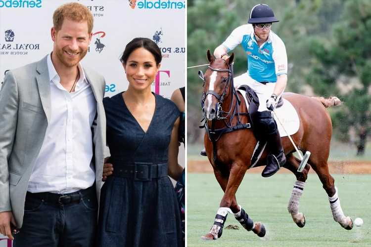 Prince Harry's Polo match showed 'fun side' from past – but Meghan Markle's a notable absence, body language expert says