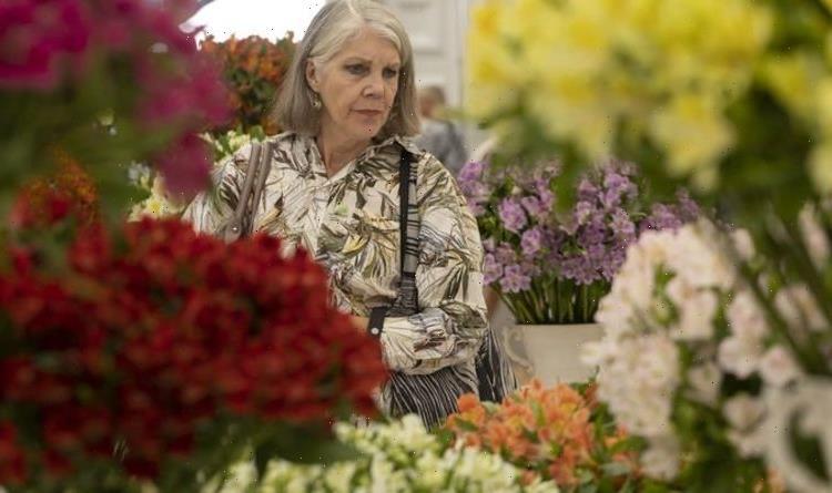 Chelsea Flower Show: Reason for 'raised egg' in gold medal-winning garden display
