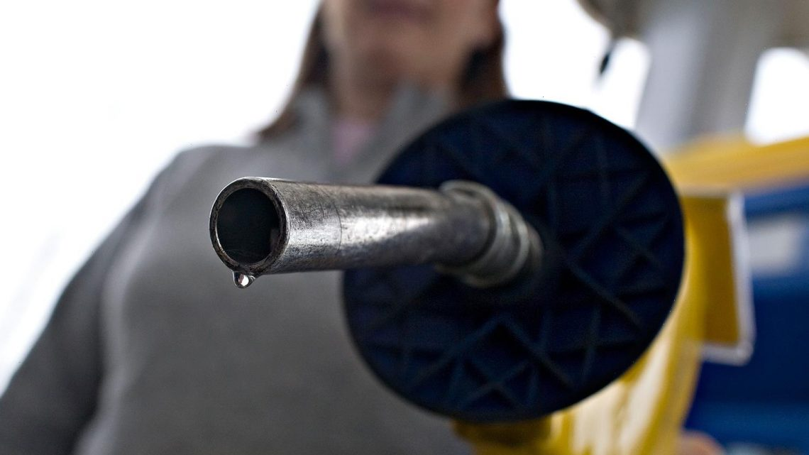 Petrol shortage: Drivers urged 'not to panic' or store fuel amid lorry driver chaos