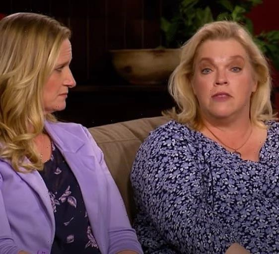 Sister Wives Fans to Meri and Christine Brown: How Dare You Work for LuLaRoe?!?