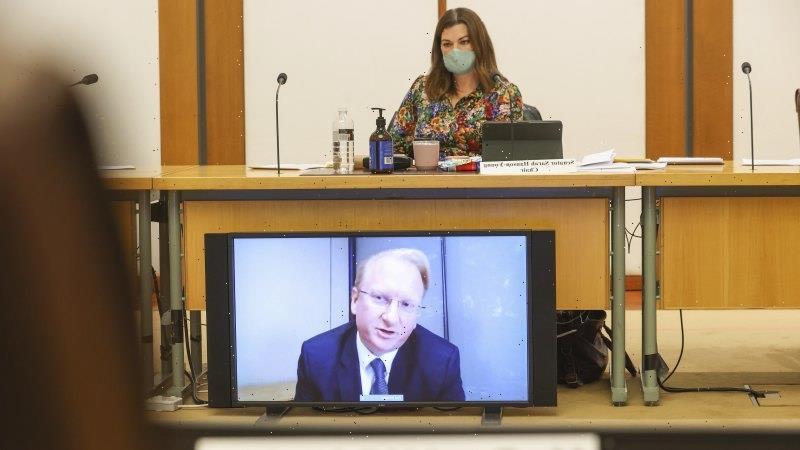 Sky News boss denies COVID misinformation, confirms News Corp climate focus