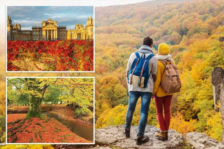 Perfect places in Britain to immerse yourself in the beauty of autumn