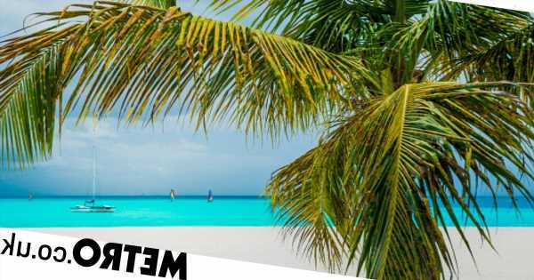 Where is hot in January? Top New Year sun holiday destinations